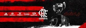 Imagem Destaque Fla Esports